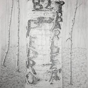 Arborglyph #2, Hyndman Creek (12 1:2x20)