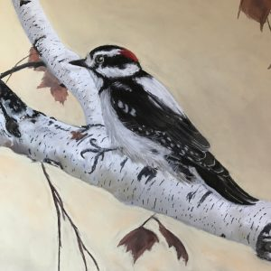 Hairy Woodpecker (17 1:2x14 1:2)