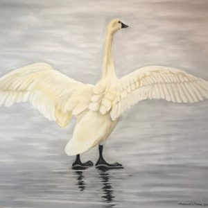 Tundra Swan on Ice Floe (21 1:2x16)