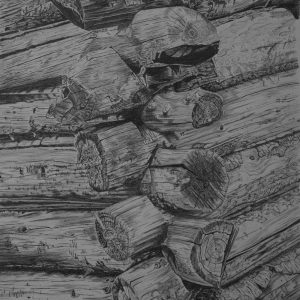 Old Log Mining Cabin Detail, Phia Kappa Creek Idaho (14 x 21 1:2)