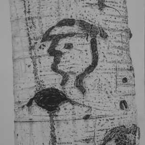 Arborglyph #8, Johnstone Creek Hailey Idaho