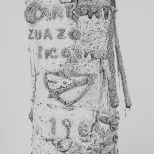 Arborglyph #11, Neal Canyon_graphite